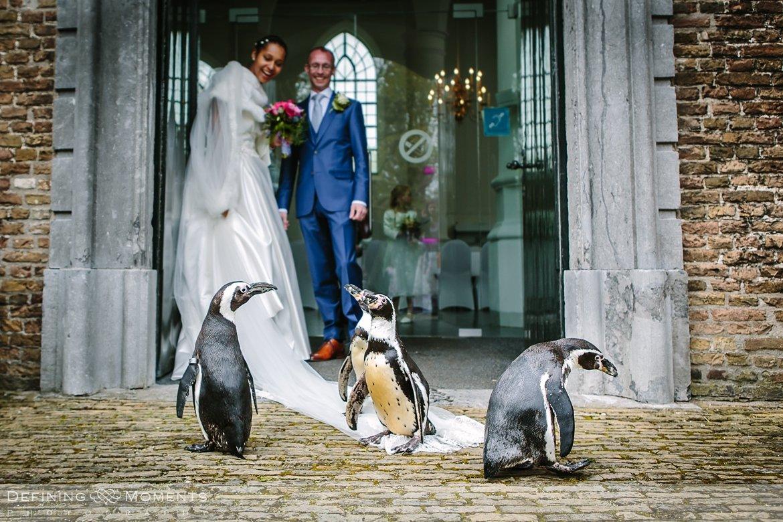 pinguins ournalistiek trouwfotograaf lambertuskerk raamsdonk documentair bruidsfotograaf authentieke natuurlijke bruidsfotografie trouwfotografie breda kerkelijk huwelijk bruidsreportage trouwreportage