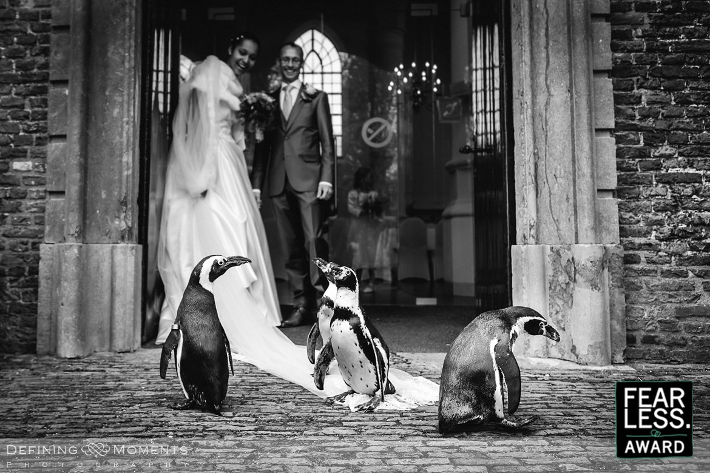 fearless-bruidsfotografie-award-bruid-penguins-raamsdonk