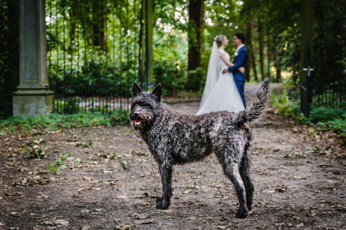 trouwfoto bruid bruidegom hond buiten groen bomen landgoed_wolfslaar breda journalistieke bruidsfoto reportage trouwfoto documentaire trouwfotografie bruidsfotografie